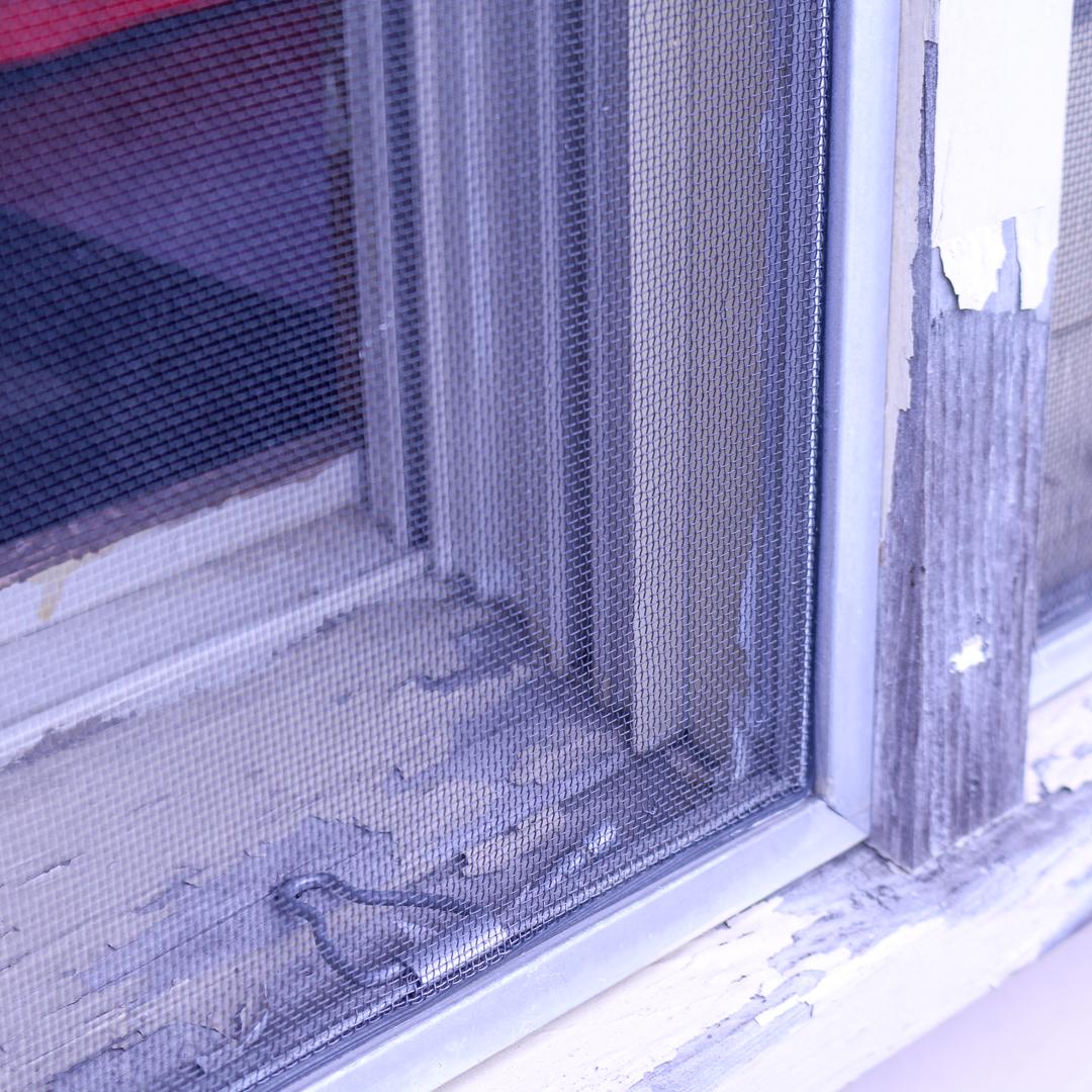 chipping windows