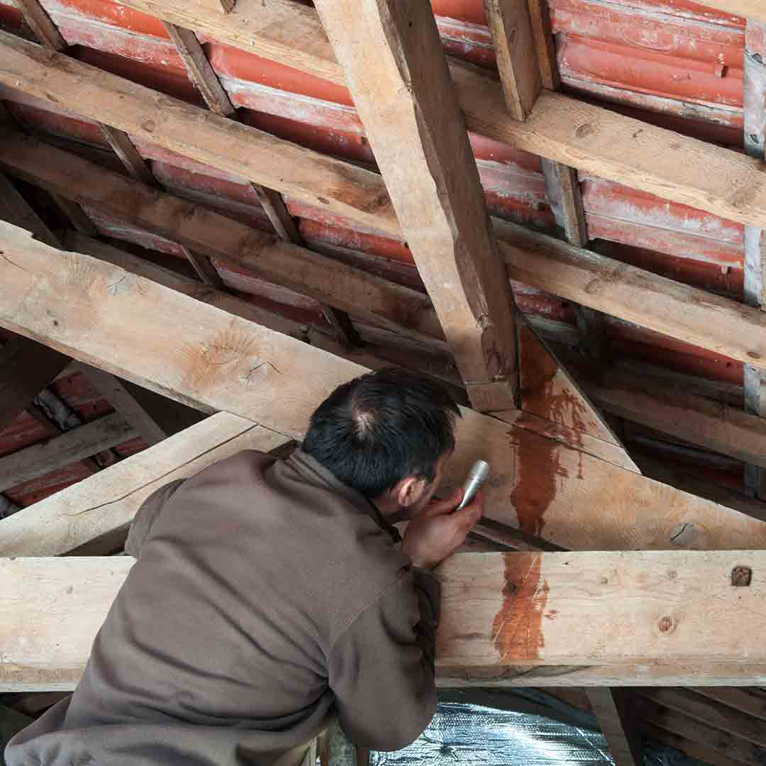 person inspecting attic rafters
