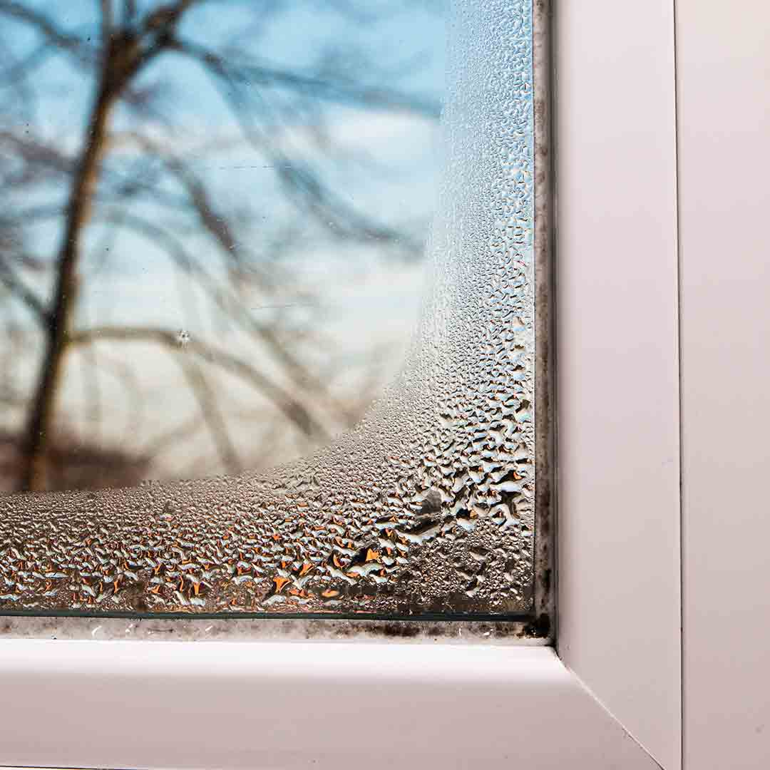 Condensation between window panes.
