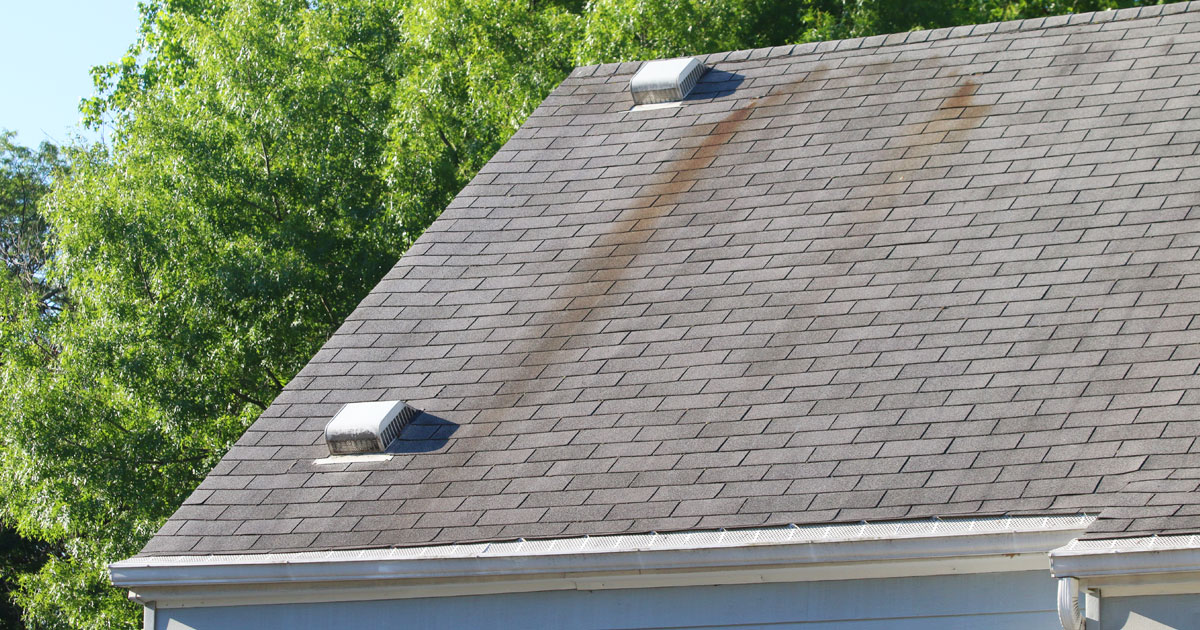 Roof damage from the summer